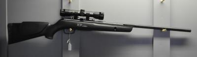 GAMO -- Silent Stalker IGT 4.5mm